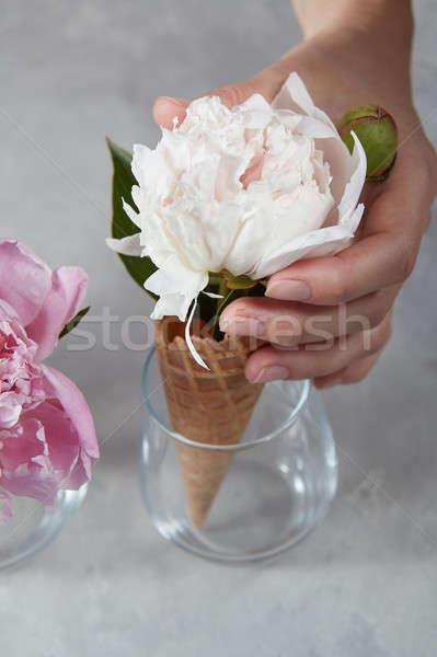 女性 手 ワッフル カップ 白 ガラス ストックフォト © artjazz