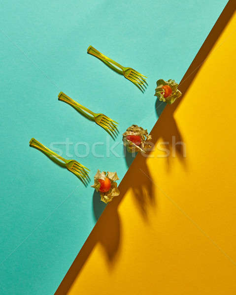 Flat lay view of the pattern of three yellow physalis fruit and forks with shadows on diagonally duo Stock photo © artjazz