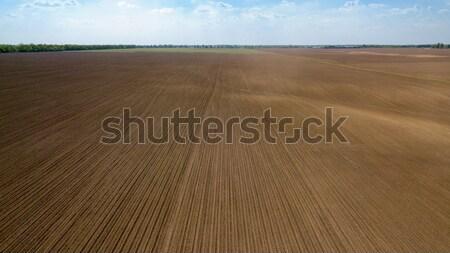 Agrícola campo solo primavera blue sky foto Foto stock © artjazz
