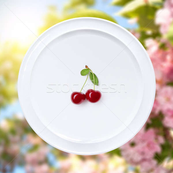 Cseresznye fehér tányér sakura virágok kert Stock fotó © artjazz