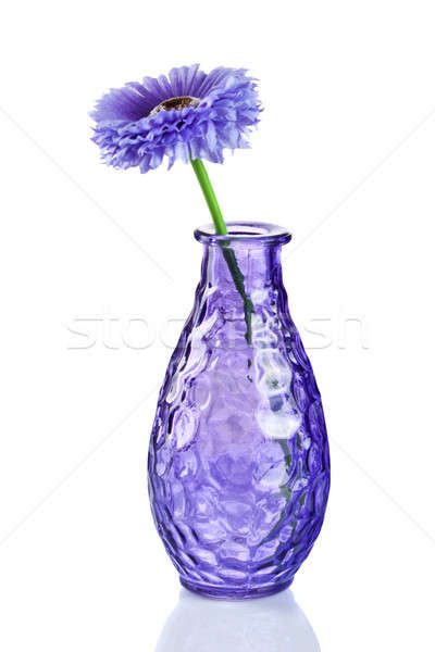 синий цветок ваза изолированный белый весны любви Сток-фото © artjazz