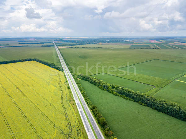 Panoramic aerial view from drone of a highway with cars on it, fields, tree planting at summer sunse Stock photo © artjazz