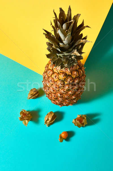 Ripe physalis with husk and pineapple on a blue yellow background Stock photo © artjazz