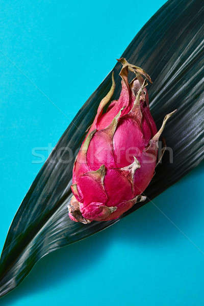 dragon fruit on a green palm leaf on a blue background Stock photo © artjazz