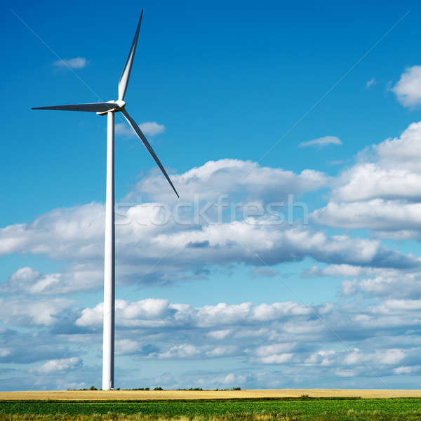 Wind generator turbine on summer landscape Stock photo © artjazz