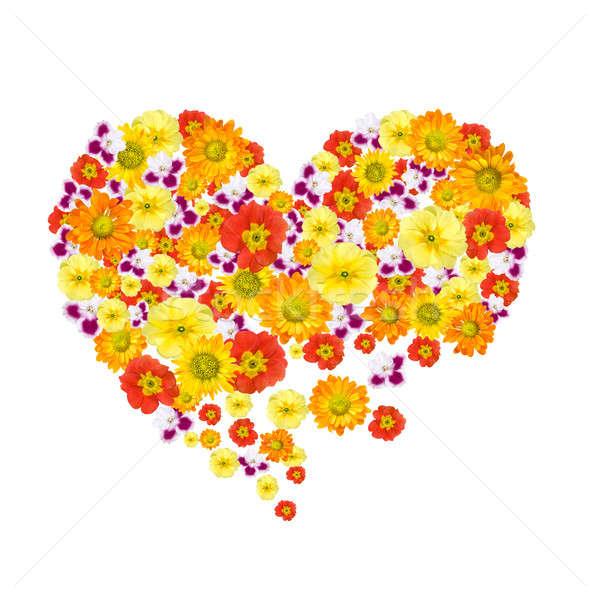 Foto stock: Corazón · color · flores · aislado · blanco · amor
