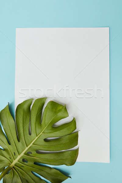 Postcard decorated leav Stock photo © artjazz
