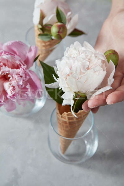 The tender fresh flowers peony in a waffle cones at a glass vase Stock photo © artjazz