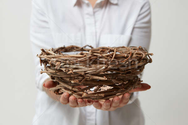 Nest in the hands of a girl in a white shirt on a light background Stock photo © artjazz