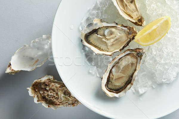 plate of opened oysters Stock photo © artjazz