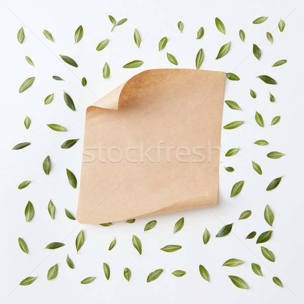 old craft paper Stock photo © artjazz