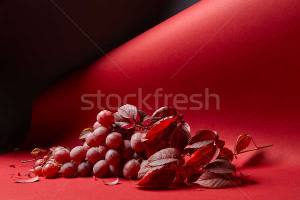 a bunch of red grapes on a red background Stock photo © artjazz