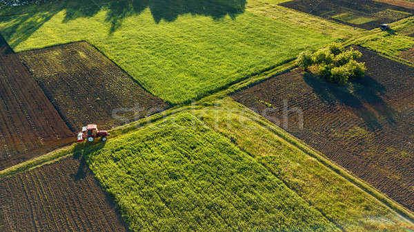 Aerial view from the drone, a bird's eye view of agricultural fields with a road through and a tract Stock photo © artjazz