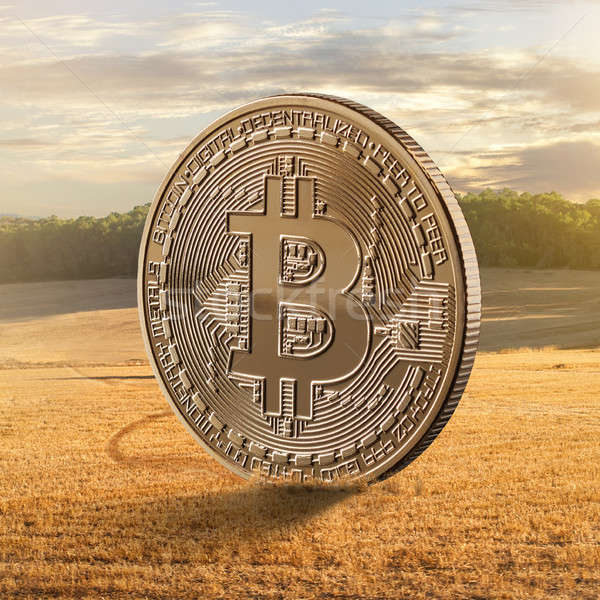 Gold coin bitcoin on a background of a field Stock photo © artjazz
