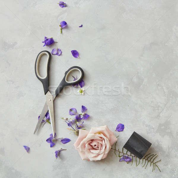 Foto stock: Tesoura · cinza · quadro · flores · rosa · baixo