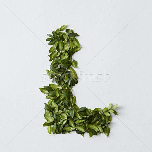 Alfabet brieven bladeren Engels geïsoleerd witte Stockfoto © artjazz