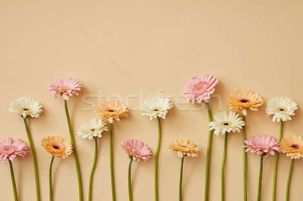 Diferente amarillo papel primavera tarjeta de felicitación madres Foto stock © artjazz