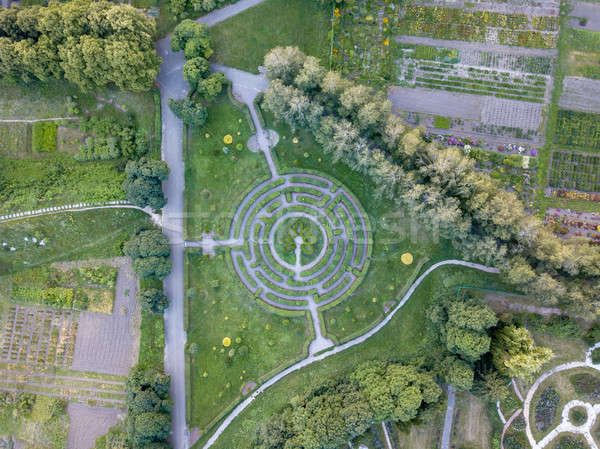 Panoramic view from the drone to a part of botanical garden with with a labyrinth, trees, flower bed Stock photo © artjazz
