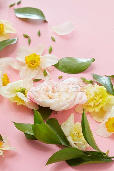 Beyaz çiçekler yandan görünüş pembe doku çiçekler yeşil yaprakları Stok fotoğraf © artjazz