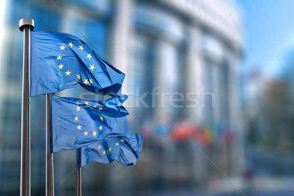 European union flag Stock photo © artjazz