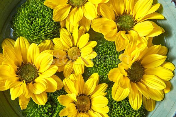 Boeket Geel groene kom water Stockfoto © artjazz