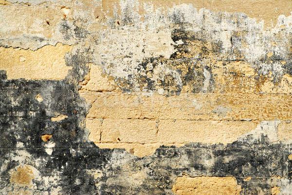 Old bricks wall texture Stock photo © artjazz