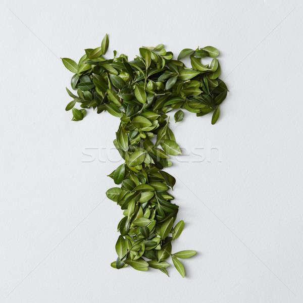 Alfabe harfler yaprakları İngilizce yalıtılmış beyaz Stok fotoğraf © artjazz