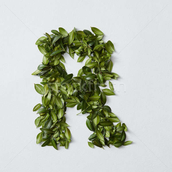Alphabet letters from leaves Stock photo © artjazz