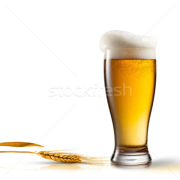 Beer in glass and wheat isolated on white background Stock photo © artjazz