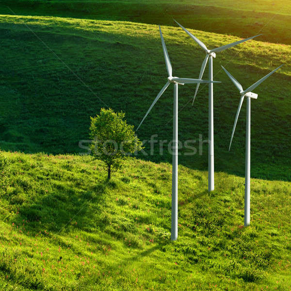 Wind turbines on green meadow Stock photo © artjazz