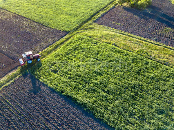 Aerial view from the drone, a bird's eye view of agricultural fi Stock photo © artjazz