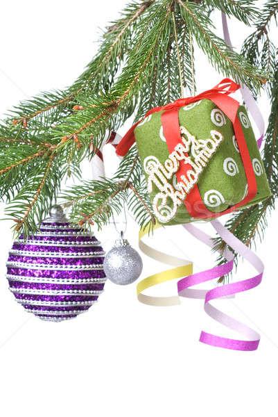 Noel hediye dekorasyon şube Stok fotoğraf © artjazz