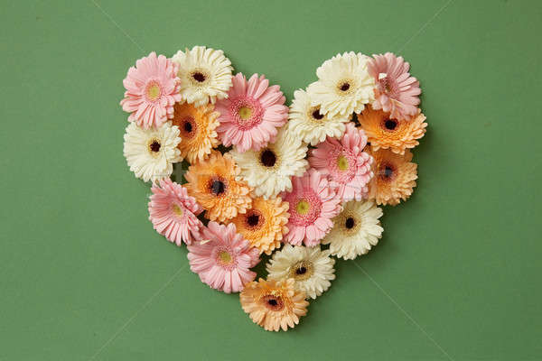 Heart made from fresh gerbera flowers Stock photo © artjazz