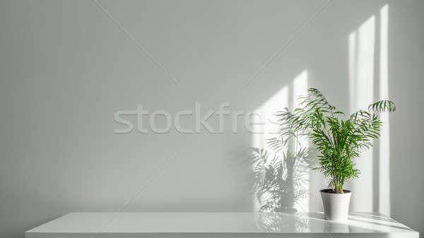 Alb oală tabel perete verde plantă Imagine de stoc © artjazz