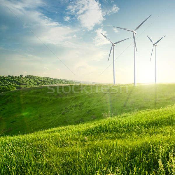 Wind generators turbines on sunset summer landscape Stock photo © artjazz
