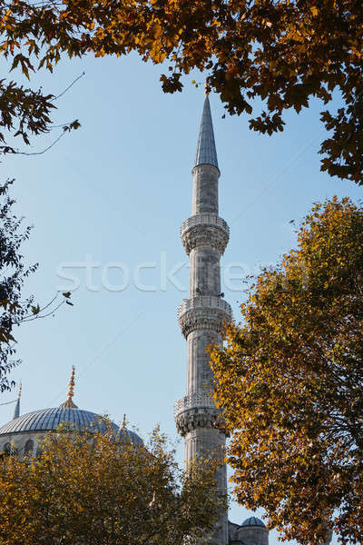 Blue Mosque Sultan Ahmet Cami in Istanbul Turkey Stock photo © artjazz