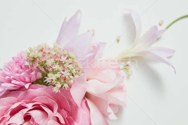 Marco esquina flor rosa ramo lugar texto Foto stock © artjazz