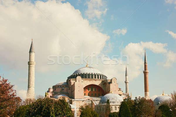 мечети Стамбуле Турция Blue Sky осень здании Сток-фото © artjazz