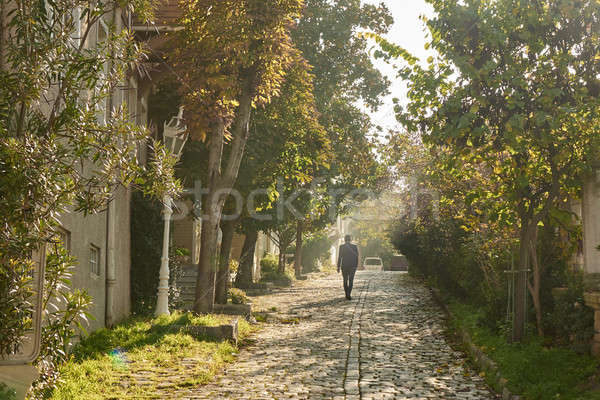 Old Istanbul street on a sunny day Stock photo © artjazz