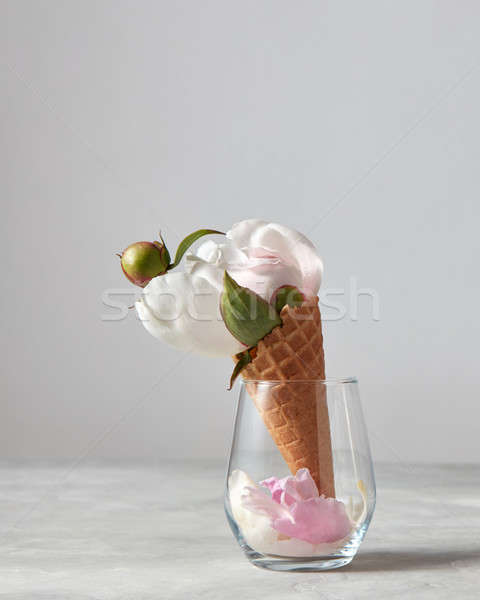 Fiore bianco bud foglia verde petali vetro Foto d'archivio © artjazz