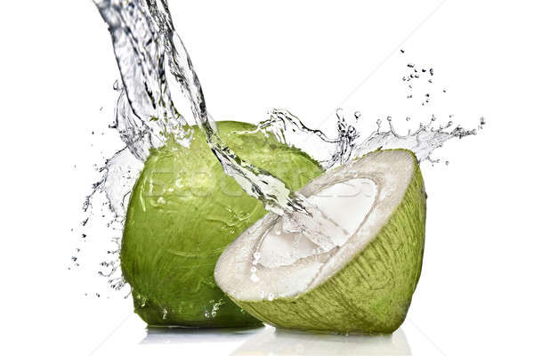 splash of water on green coconut isolated on white Stock photo © artjazz