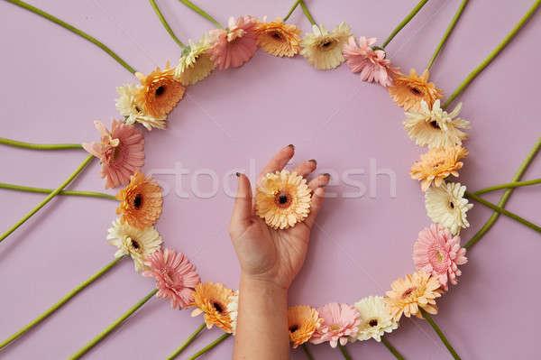 Piękna ramki kwiaty różowy inny kobiet Zdjęcia stock © artjazz