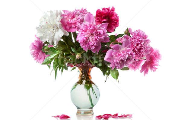 ваза изолированный белый цветок весны любви Сток-фото © artjazz
