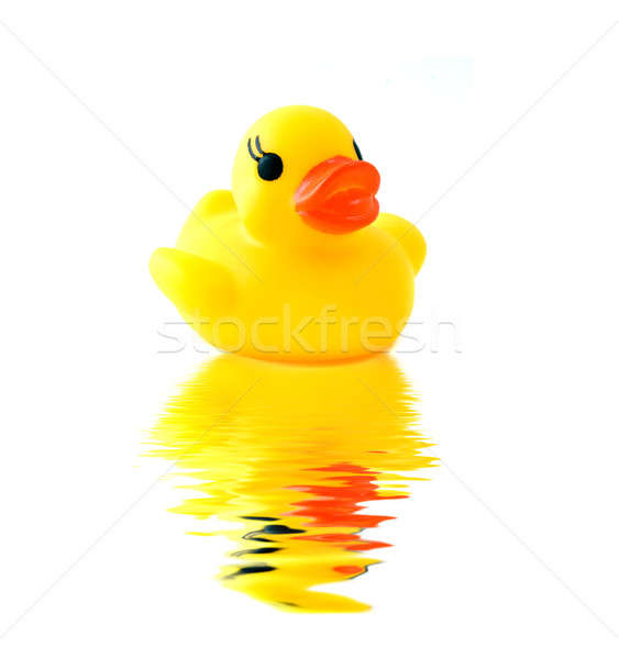 rubber yellow duck with reflection isolated Stock photo © artjazz