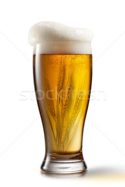 Beer in glass and wheat inside isolated on white background Stock photo © artjazz