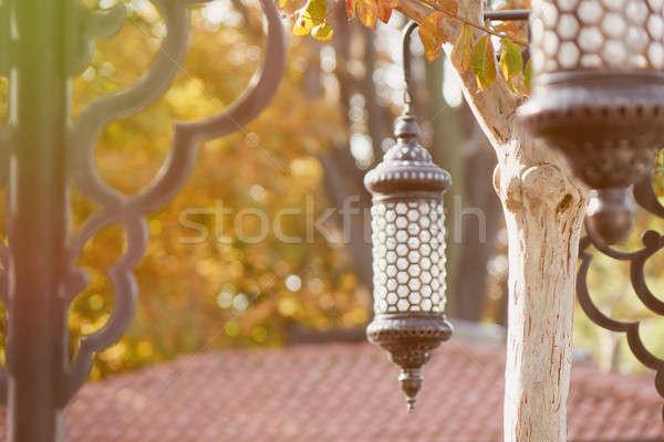 伝統的な ラマダン ランタン 木 公園 ストックフォト © artjazz