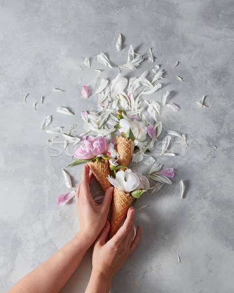 Lányok kezek tart édes ostya gyengéd Stock fotó © artjazz