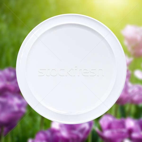 Fehér tányér rózsaszín tulipánok nap nyaláb Stock fotó © artjazz