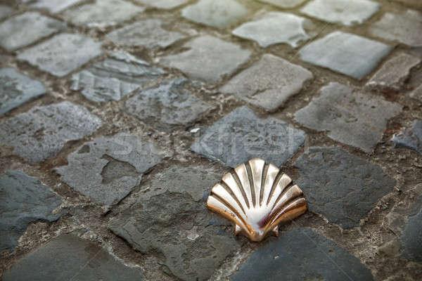 Santiago Pilgrims shell in Brussels Stock photo © artjazz