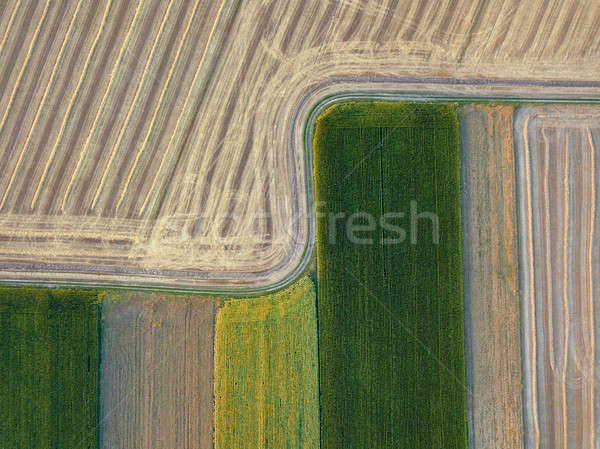 Panoramic view from flying drones to agricultural fields, prepared for sowing crops. Top view. Stock photo © artjazz